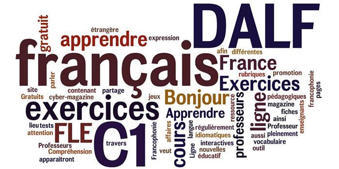 france alumni  dalf  fran u00e7ais option pro